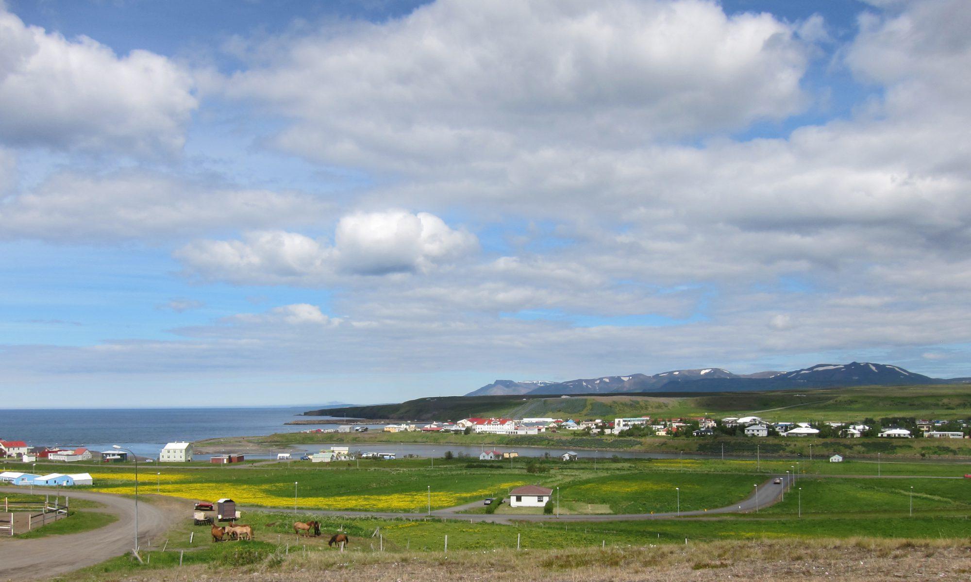 Iceland Field School